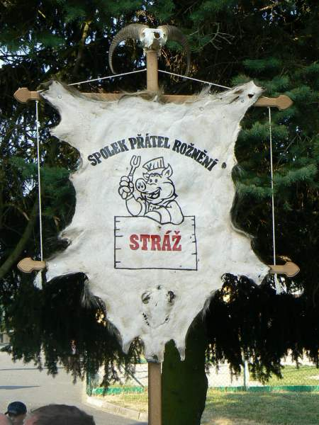 90.let SDH Stráž + Setkání Stráží červenec 2013